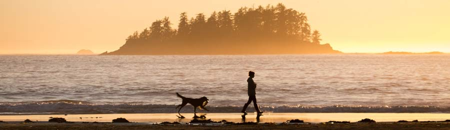 Lady and a dog walking on a beach at sunset.