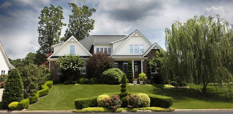 House with amazing lawn, great looking trees and plants and bushes.